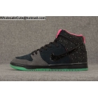 wholesale Mens & Womens Nike Dunk High Premium SB Northern Lights