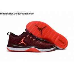 Mens Air Jordan Trainer 1 Low Night Maroon Infrared 23