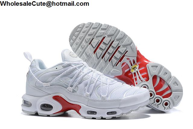 wholesale Nike Air Max TN Plus shoe in china,cheap wholesale