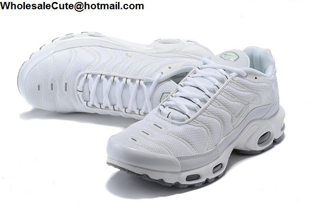 Nike Air Max Plus All White